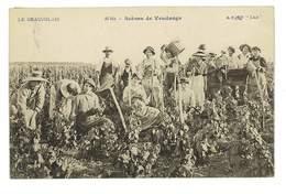 CPA AGRICULTURE LE BEAUJOLAIS 16bis SCENES DE VENDANGE - Vines