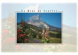 38 - Isère - La Dent De Crolles - Fleurs - Carte Neuve - Voir Scans Recto-Verso - France