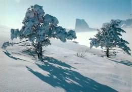 38 - Isère - Le Mont Aiguille - Face Nord-Ouest Vue Depuis Les Alpages De Gresse-en-Vercors - Hiver - Neige - Carte Neuv - France