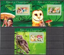A{172} Guinea 2007 Birds Owls Mushrooms 3 S/S Deluxe MNH** - Guinea (1958-...)