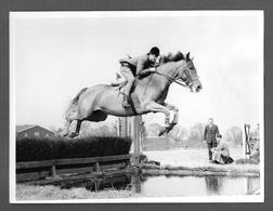 Photo - CHEVAL CHEVAUX HIPPISME - HORSE - CAVALLO -  PAT SMYTHE - Sport