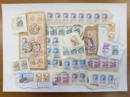 Postmark Stamps Ukraine Standard - Ukraine
