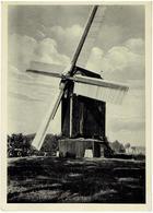 DORNUM - Aurich - Niedersachsen - Ost Friesland - Mühle - Molen - Gross Formaatkarte - Aurich