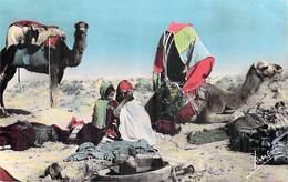 Afrique-Algérie- Scènes Et Types CAMPEMENT DE NOMADES  (Editions : Jansol)*PRIX FIXE - Scènes & Types