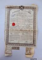 Royaume De Grèce - Emprunt 5% 1884 +coupons - Actions & Titres