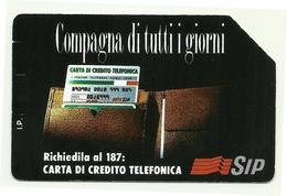 Italia - Tessera Telefonica Da 5.000 Lire N. 221 - 31/12/95 Compagna Di Tutti I Giorni - Pubbliche Ordinarie