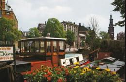 AN30 Amsterdam, Bloemenmarkt Met Munttoren - Amsterdam