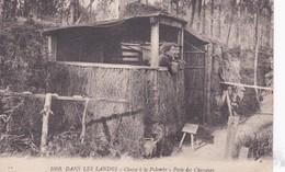 40 LANDES - Chasse à La Palombe, Poste Des Chasseurs  (lot Pat 77) - Caccia