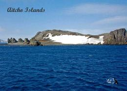 Antarctica South Shetland Aitcho Islands View New Postcard - Sonstige