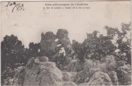 07  Le Bois De Paiolive Rocher Dit Le Lion Et L'ours - France
