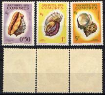 COMORES - 1962 - CONCHIGLIE - SEA SHELLS - MNH - Comores (1950-1975)