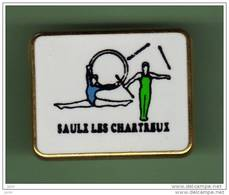 GYM *** SAULE LES CHARTREUX *** 1035 - Gymnastique