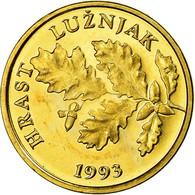 Monnaie, Croatie, 5 Lipa, 1993, FDC, Brass Plated Steel, KM:5 - Croatie