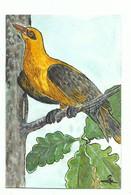 Petite Aquarelle Originale ( Format 10/15 Cm ) Signée - Oiseau Exotique Ou Pic Vert ?, - Aquarel