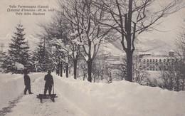 LIMONE-CUNEO-VALLE VERMENAGNA-VIALE DELLA STAZIONE-INNEVATA-NON VIAGGIATA -ANNO 1920-1930 - Cuneo