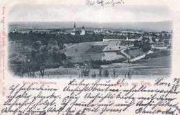 Suisse  -  Thurgovie - HORN Vom Galgenberg - Gruss Aus HORN    - 1898 - TG Thurgovie