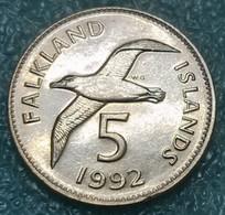 Falkland Islands 5 Pence, 1992 -4236 - Falkland Islands