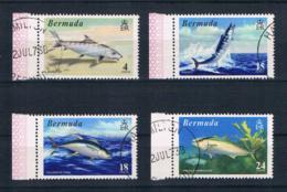 Bermuda 1972 Fische Mi.Nr. 281/84 Kpl. Satz Gestempelt - Bermuda