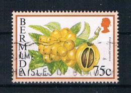 Bermuda 1995 Mi.Nr. 675 XI Gestempelt - Bermuda