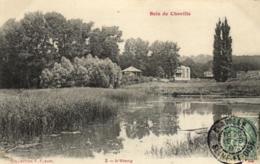 92 - Hauts De Seine - Bois De Chaville - L'Etang - C 8317 - Chaville