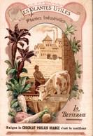 CHOCOLAT POULAIN ORANGE - LES PLANTES UTILES - PLANTES INDUSTRIELLES - LA BETTERAVE - Poulain