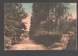 Lustin / Lustin Sur Meuse - Route Du Fond Delvaux - 1925 - Colorisée - Profondeville