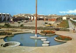 CPM Neuve Port Camargue  Ecole De Voiles - Frankreich