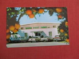 Mixon Fruit Farms Florida > Bradenton.     Ref 3525 - Bradenton