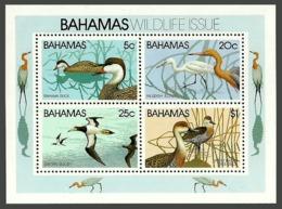 BAHAMAS 1981 BIRDS WILDLIFE EGRET DUCKS BOOBY M/SHEET MNH - Bahamas (1973-...)