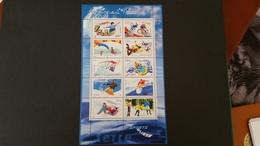 France Timbres Bloc/feuillet N° BF76 - Année 2004 -sports De Glisse - Nuovi