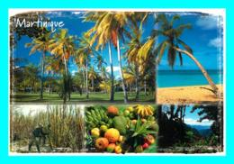 A757 / 295  MARTINIQUE - Martinique