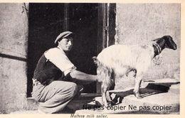 Malte Malta Maltese Milk Seller Goat Milking Milkman Milkseller - Malta