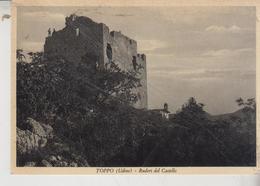 TOPPO UDINE  RUDERI DEL CASTELLO 1953 - Udine