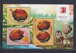 Singapore SINGPEX 2019 Exhibition, Year Of The Pig M/S MNH - Singapur (1959-...)