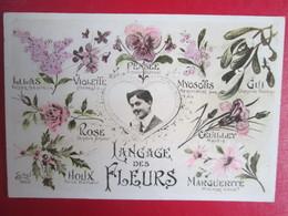 Le Langage Des Fleurs - Phantasie