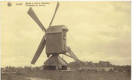 LEUTH - Maasmechelen - Moulin à Vent Et Habitation - Windmolen En Woning - Maasmechelen