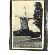 Europe-Pays-Bas-CADZAND-*Molen *-une Vue Du Moulin à Vent - Cadzand