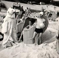 Amusante Petite Photo Originale Déguisement Et Eisbär Pour Cet Ours Blanc Polaire & Un Jeune Couple à La Plage Vers 1940 - Anonymous Persons