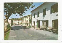 Cp , Espagne , DANCHARINEA , Carretera A Francia ,  Vierge - Navarra (Pamplona)