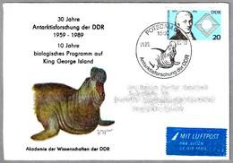 INVESTIGACION EN LA ANTARTIDA - MIROUNGA - Elefante Marino. Potsdam 1989 - Forschungsprogramme
