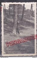 Au Plus Rapide Cap Ferret été 1938 Homme Urinant Après Un Repas Bien Arrosé ! - Lieux
