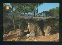 Vallgorguina. *Dolmen. Piedra Gentil* Ed. Fisa Nº 6229. Nueva. - Barcelona