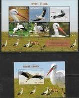 GAMBIA, 2019, MNH, BIRDS, STORKS, WHITE STORKS, SHEETLET+S/SHEET, HIGH FV - Storks & Long-legged Wading Birds