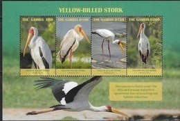 GAMBIA, 2019, MNH, BIRDS, STORKS, YELLOW-BILLED STORKS, SHEETLET - Storks & Long-legged Wading Birds