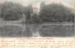 WATERMAEL-BOITSFORT - Château De Bischoffsheim - Watermaal-Bosvoorde - Watermael-Boitsfort