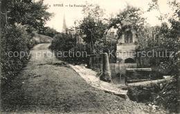 13505524 Savennieres Château D'Epiré La Fontaine Savennieres - France