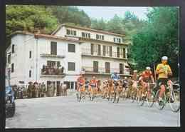 53° GIRO D'ITALIA - Pensione Ristorante La Griglia D'Oro - Passo La Calla - RONTA (Firenze)  Nv - Cycling