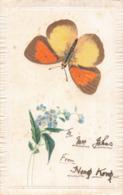 R205440 Nawa Entomological Factory. Gifu Japan. Pat. No. 22916. Greeting Card. Postcard - Cartoline