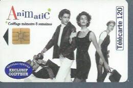 TELECARTE 120 UNITES - ANIMATIC - 01 / 1996 - SO3 - France