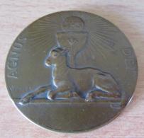 Médaille Religieuse Uniface En Métal à Patine Bronze - AGNUS DEI - Signée V. PETER - Religion &  Esoterik